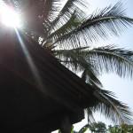 midday_sun